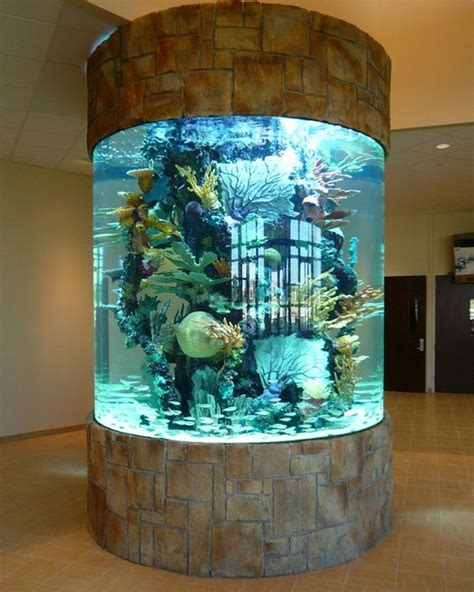 Floor And Decor Clearwater Best 25 Home Aquarium Ideas On Pinterest Amazing Fish