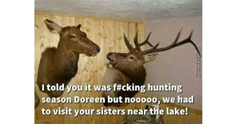 deer meme 14 deer memes you definitely want to pics