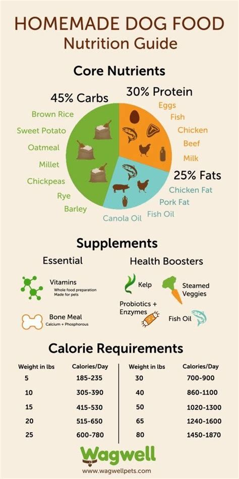 labrador puppy food chart is it necessary to give vitamin and calcium tonics for a labrador puppy quora