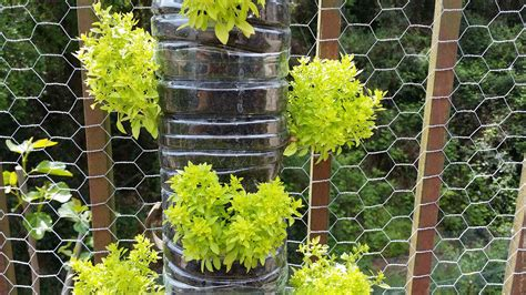 tips on building a vertical garden out of plastic bottles