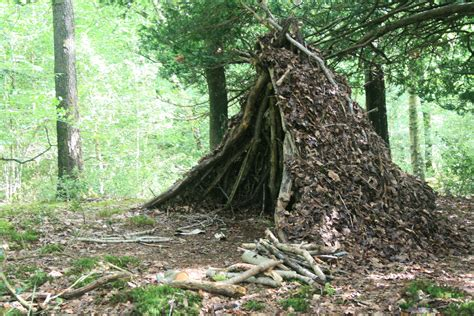 the shelter woodsmoke bushcraft wilderness survival 187 uncategorized