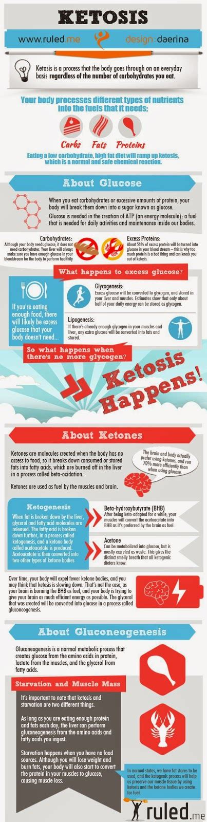 protein ketosis 10 facts about ketosis loss and weight loss my