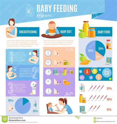 Baby Feeding Information Infographic Layout Stock Vector Illustration Of Breast Clock 64566267 Baby Year Infographic Template