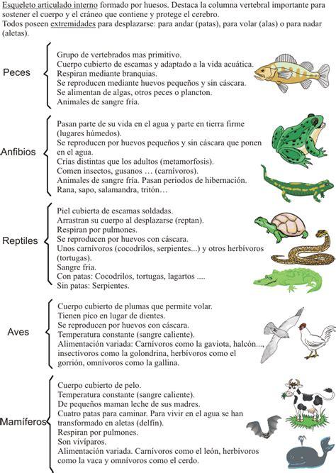 los animales vertebrados escuela bloguera los animales vertebrados naturales