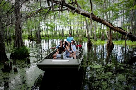 boat tour new orleans 72 hours in new orleans cajun encounters sw tour review