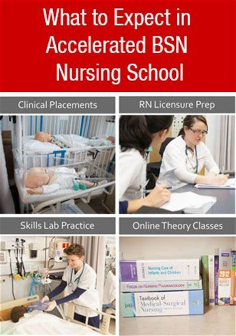 accelerated bsn what to expect from northeastern s accelerated bsn program