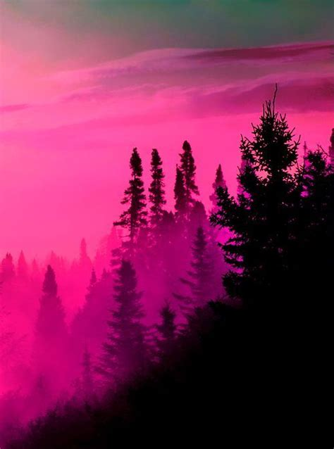 natures paintbox photo pink aesthetic pink sky