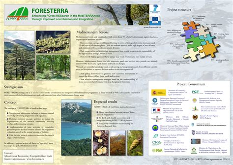 Plakat Querformat foresterra posters