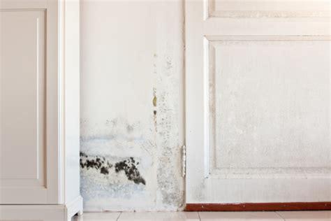 Lutter Contre Humidite Des Murs 2863 by Immobilier Travaux L Humidit 233 Dans La Maison Des