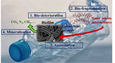 Bio Degrades Into Plain Water by Bacterial Degradation Of Synthetic Plastics Explore To