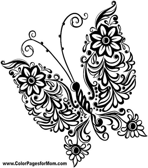 coloring pages for adults butterflies butterfly coloring page 37 butterflies to color