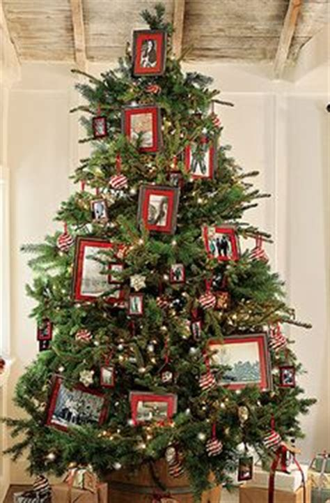 1000 ideas about picture tree on pinterest photo tree