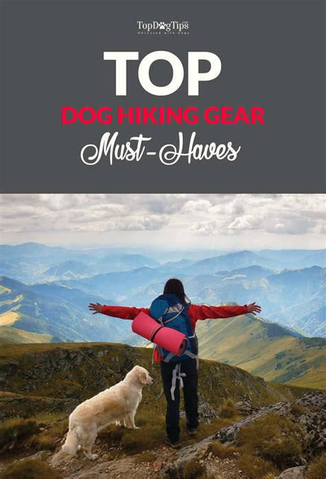 puppy must haves hiking gear must haves what you need when hiking with dogs