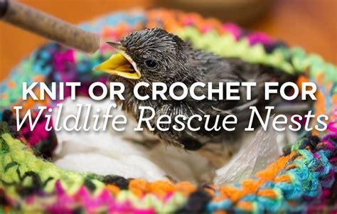 knitting for wildlife knit or crochet for wildlife rescue nests top crochet