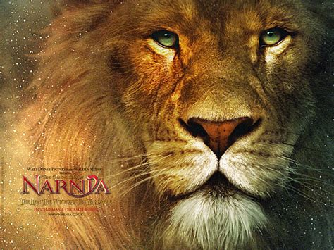 the chronicles of narnia the narnia 2 the chronicles of narnia wallpaper 241352