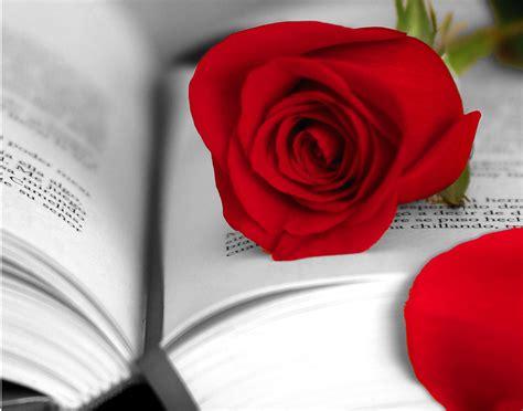 libro sobre la firmeza del d 237 a del libro 7 libros para cambiar el mundo blog triodos