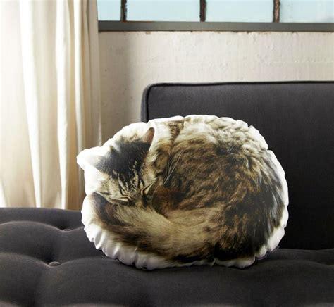 Cat On Pillow by Sleeping Cat Pillow