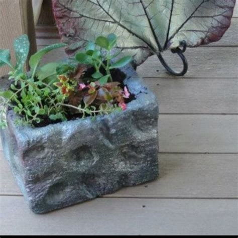 Can You Use Styrofoam In Planters by 33 Best Repurposing Omaha Steaks Coolers Images On