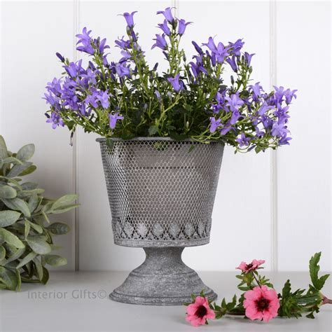 Aged Zinc Metal Wire Mesh Footed Planter, Galvanised