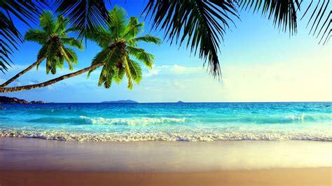 summer holidays bioxigen