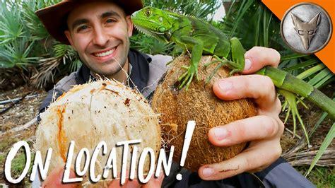 cast away coconut scene mgw youtube coconut breakfast