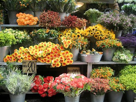 flowers flower shop the flower shop business retail and wholesale florists