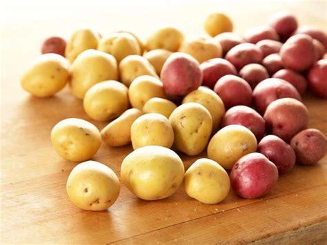 quali sono gli alimenti che contengono carboidrati questi carboidrati non fanno ingrassare dissapore