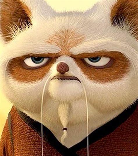 imagenes maestro shifu kung fu panda foto maestro shifu en kung fu panda
