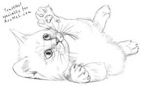 how to draw a kitten step by step arcmel com