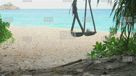 swings on the beach a rope swings on the beach stock video footage royalty