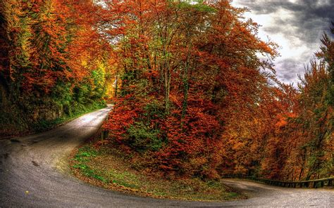 google images of fall free fall wallpaper and screensavers wallpapersafari