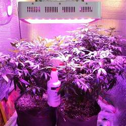 greenhydro 300w 10bands spectrum led grow light for