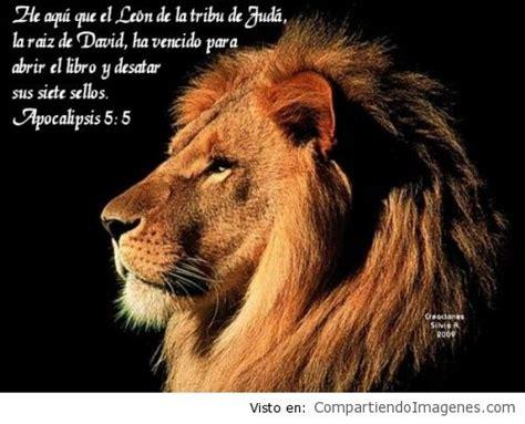 imagenes de leones con versiculos biblicos el le 243 n de la tribu de juda ha vencido imagenes
