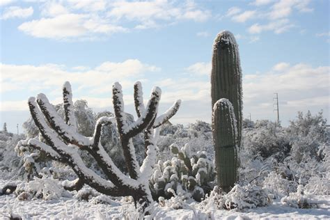 desert snow the day hell froze snow comes to arizona holy kaw