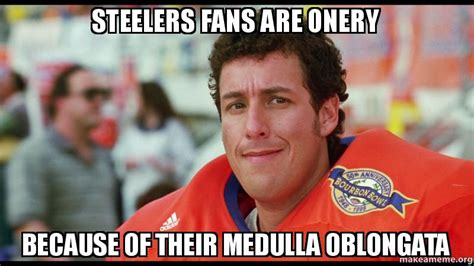 Steelers Fans Memes - steelers fans are onery because of their medulla oblongata