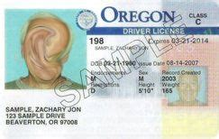 oregon id card template oregon id complete details myoids id guide