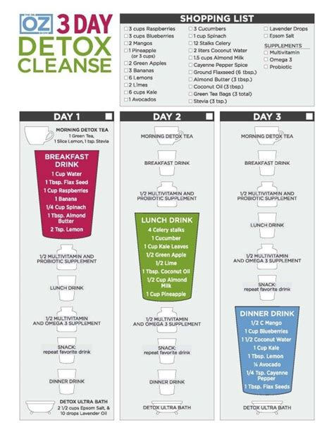 31 Day Detox Diet by Best 25 2 Day Detox Ideas On 2 Day Juice