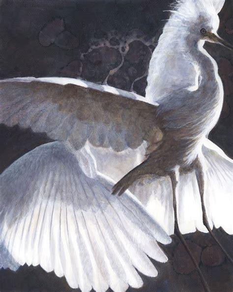 Duncan Trilogy By Feather 28 best my white bird series images on original paintings and bird