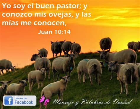 mensaje para el da del pastor mensajes y palabras de verdad jes 250 s el buen pastor dia