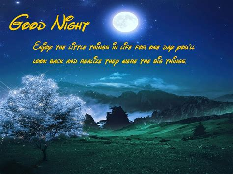 romantic good night wishes messages good night sms