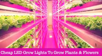 cheapest led lights 7 best cheap led grow lights of 2017 for indoor plants