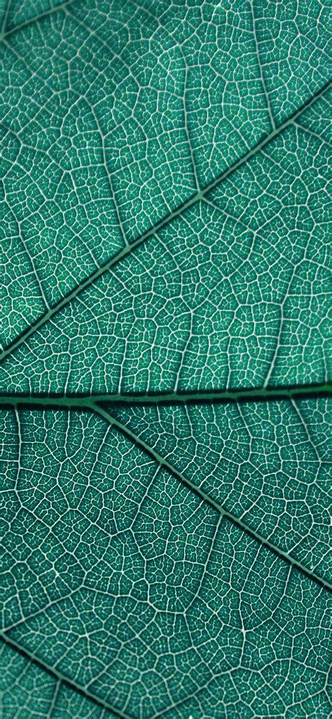 beautiful texture wallpapers  iphone