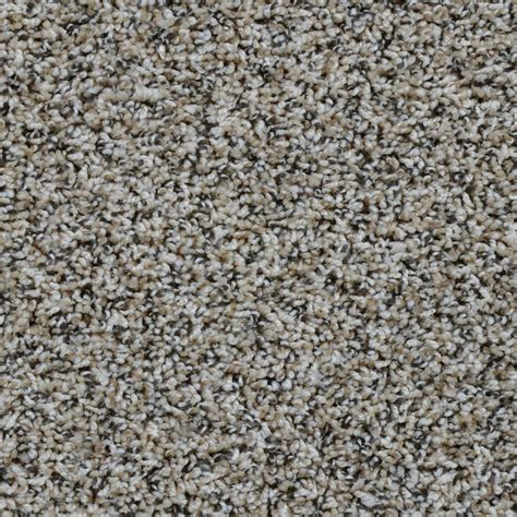 adventurous color woodland twist 12 ft carpet h4102