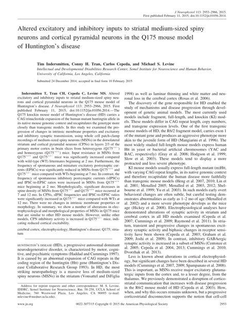 Superjitu Los Cpns Tim B S altered excitatory and inhibitory inputs pdf