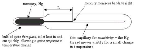 clinical thermometer labeled diagram write the construction of laboratory thermometer brainly in