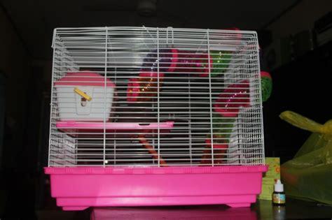 Kandang Hamster 231 2 Lantai hamster cage kandang hamster 150rb r hamnie moy