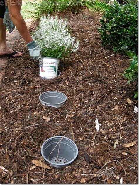 Gardening Tricks Top 10 Gardening Tips And Tricks Top Inspired