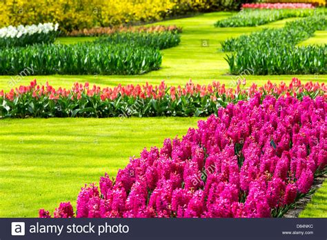 The World Famous Keukenhof Gardens Near Lisse Holland Best Flower Garden In The World