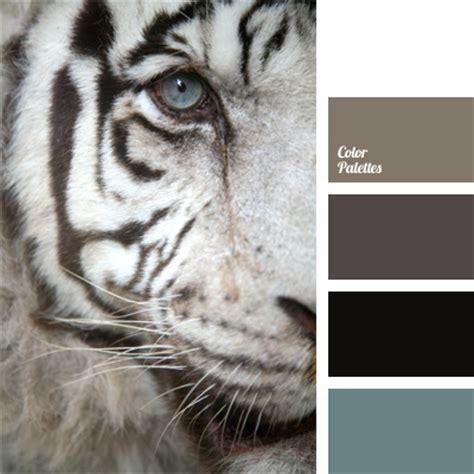 what color is a tiger color palette 173 color palette ideas
