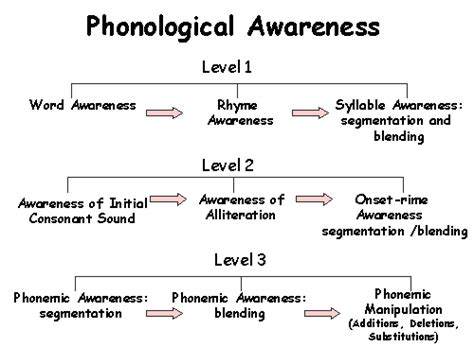 phonological processes worksheets miss thrifty slp referencing